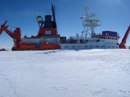 Entladung der Polarstern (Foto: AWI/Klaus Guba)