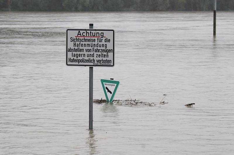 An der Mündung des Karlsruher Rheinhafens ist das Gelände vor dem Hochwasserdamm überschwemmt. (Foto: Stadt Karlsruhe)