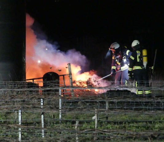 Brand einer Hütte (Foto: Feuerwehr Neustadt)