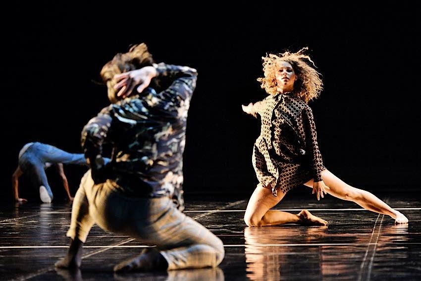 """Das Tanzensemble des Pfalztheaters Kaiserslautern soll im November dieses Jahres mit dem Tanztheaterstück """"Human 8 Words"""" in der Landauer Jugendstil-Festhalle gastieren. Die einzelnen Szenen des Stücks wurden von den Tänzerinnen und Tänzern im Home-Office geschaffen. (Quelle: Pfalztheater Kaiserslautern/Andreas Etter)"""