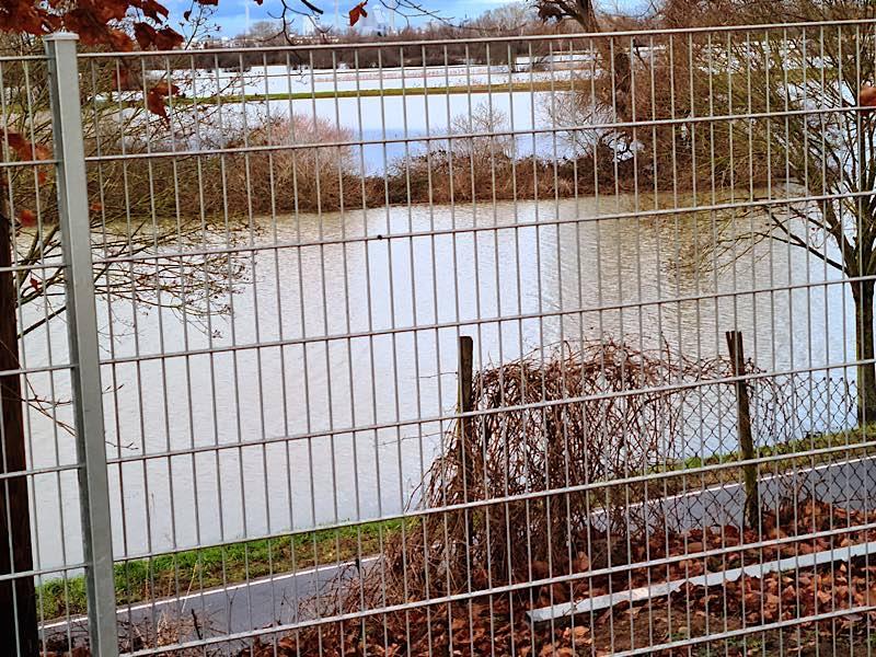 Blick auf das Hochwasser in den Schwetzinger Wiesen am Weidweg, eine Bank am Rande des Fahrradwegs ist gerade noch zu sehen. (Foto: Bürgermeisteramt Brühl)