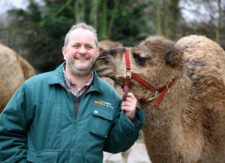 Große Freude im Zoo Landau und bei Zoodirektor Dr. Jens-Ove Heckel: Zum 1. März darf die Einrichtung wieder öffnen. (Quelle: Stadt Landau)