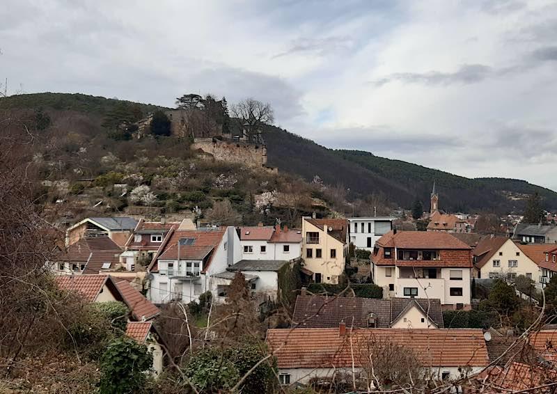 Blick auf Haardt und das Haardter Schloss bei Neustadt im Frühjahr 2021 (Foto: Biosphärenreservat Pfälzerwald)