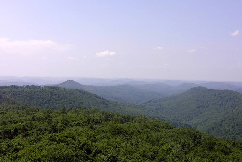 Landschaftsbild dauerhaft schützen: Biosphärenreservat Pfälzerwald (Foto: Biosphärenreservat Pfälzerwald)