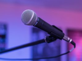 Symbolbild Musik Mikrophon (Foto: Pixabay/Cornelia Schneider-Frank)