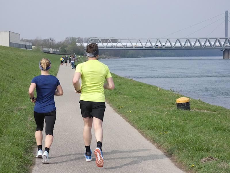 Läufer (Foto: Hannes Blank)