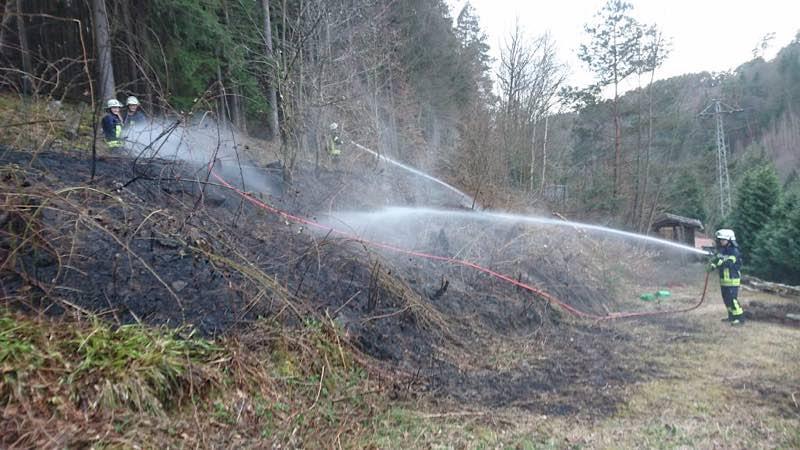 Symbolbild (Foto: Presseteam der Feuerwehr VG Lambrecht)