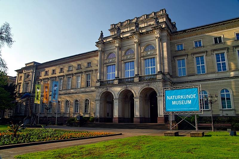 Museumsgebäude (Foto: SMNK)