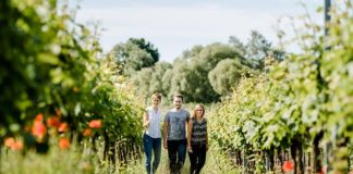 Studenten im Wingert (Foto: Stephan Presser Photography/Weincampus Neustadt)