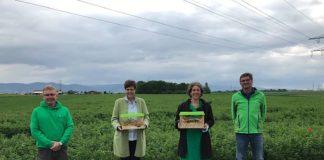 Dr. Weinhold, Regierungspräsidentin Sylivia M. Felder, Bürgermeisterin Prof. Dr. Diana Pretzell und Landwirt Herr Seitz (Foto: Stadt Mannheim)