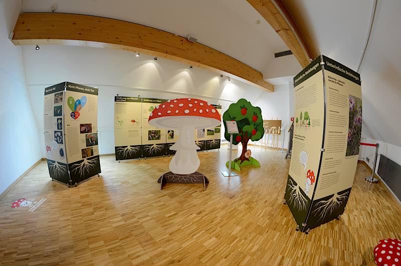 """Eindruck aus der Ausstellung """"Unterirdische Beziehungskisten"""" (Fischaugenperspektive) (Foto:Pfalzmuseum für Naturkunde)"""
