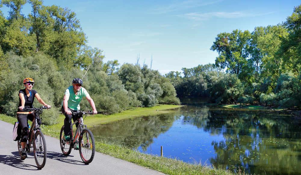 Radler auf dem Rheinradweg (Foto: Kilian Kunz)
