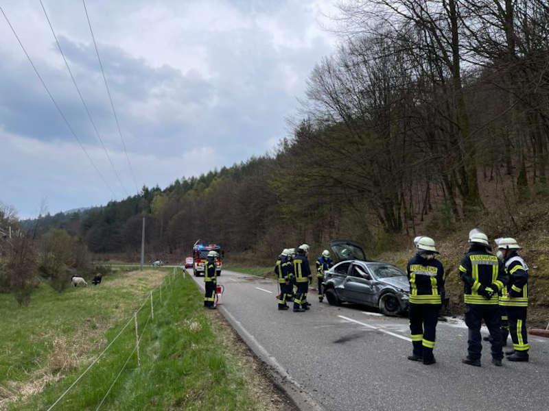Verkehrsunfall bei Speyerbrunn (Foto: Presseteam der Feuerwehr VG Lambrecht)