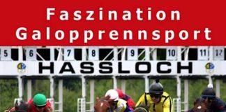 Faszination Galopprennsport (Foto: Pfälzischer Rennverein Haßloch e.V.
