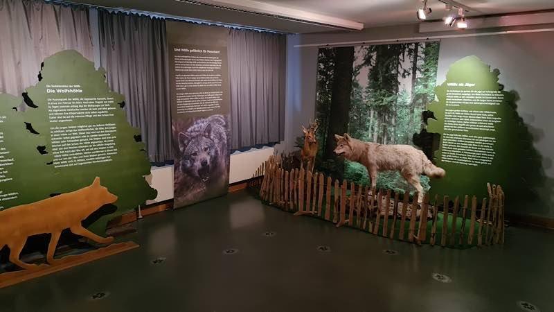 """Sonderausstellung """"Und wenn der Wolf kommt?"""" (Foto: Naturschutzzentrum Karlsruhe-Rappenwört)"""