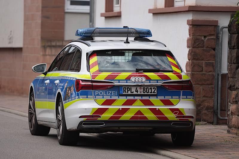 Funkstreifenwagen der Polizei Neustadt (Foto: Holger Knecht)