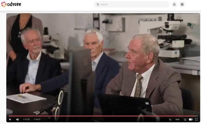 Bildschirmausschnitt Pressekonferenz in Reutlingen
