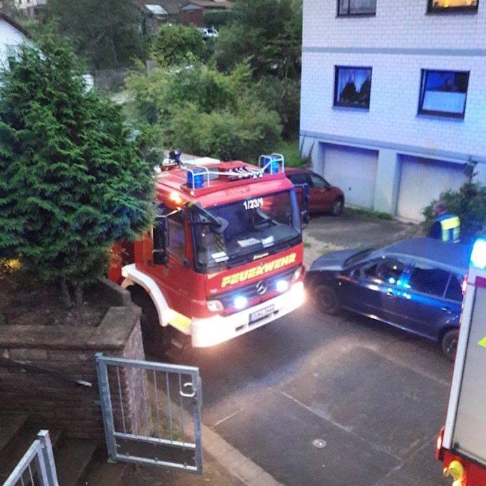 Feuerwehreinsatz in Harzofen (Foto: Presseteam der Feuerwehr VG Lambrecht)