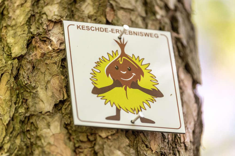 Das lustige Keschdemännchen weist den Weg. (Foto: Dominik Ketz, Bildarchiv Südliche Weinstrasse e.V.)